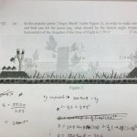 Angry Birds Smashes Into School Tests [pic]