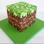 Amazing Minecraft Cake [pic]