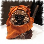 Cute Star Wars Ewok Cake [pic]
