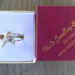 Amazing Star Trek Engagement Ring [pics]