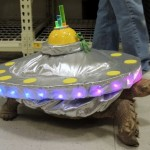 Michael Bay's Inspiration for the Teenage Alien Ninja Turtles [pic]