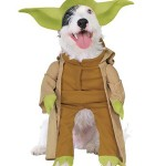 Yoda Dog Costume [pic]