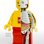 The Anatomy of a LEGO Minifig [pic]