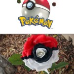 Rose Painted Like A Pokeball [pic]