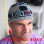 R2-D2 Beanie Hat [pic]