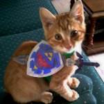 Legend of Zelda Kitten Link Cosplay [pic]