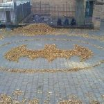 Batman Logo Made from Leaves [pic]