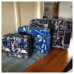 Amazing Star Wars Luggage